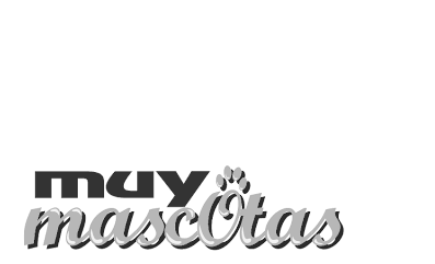 Clinica veterinaria chuchos
